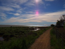 Railtrail - Te Waihora (Lake Ellesmere)
