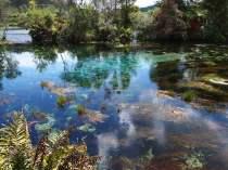 Te Waikoropupu Springs