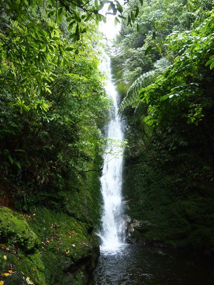 Ohau Stream Waterfall