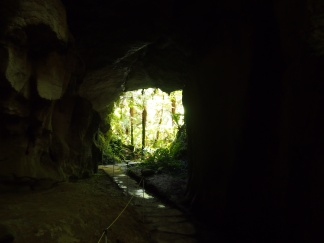 Oparara Caves