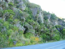 Route Westport - Punakaki