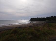 Surf Highway