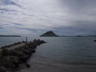 Tauranga Port
