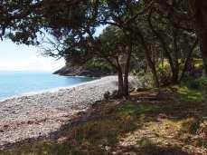 Coromandel North