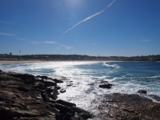 Bondi Beach 8