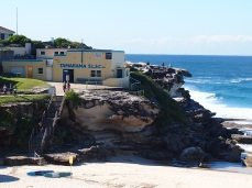Eastern Beaches Walk 8