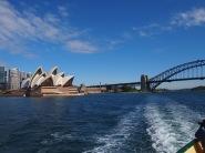 Baie de Sydney 3