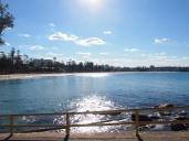 Manly Beach 2