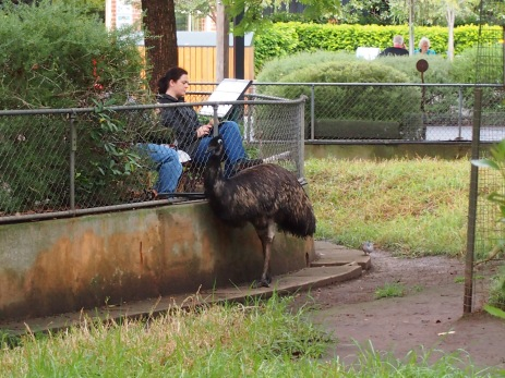 Zoo d'Adélaïde 9