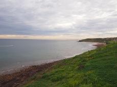 Marion Coast Walk 6