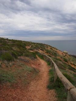 Marion Coast Walk 8