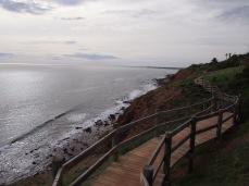 Marion Coast Walk 28