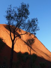 Ayers Rock 21