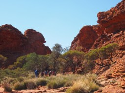 Kings Canyon 12