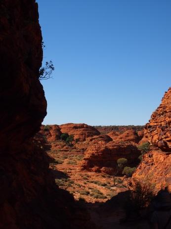 Kings Canyon 15