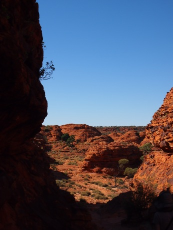 Kings Canyon 15