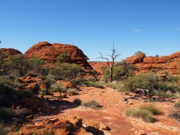 Kings Canyon 17