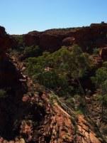 Kings Canyon 29