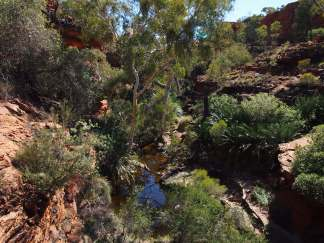 Kings Canyon 32