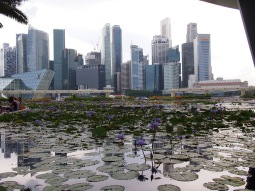 Singapour - The Art Sciences Museum