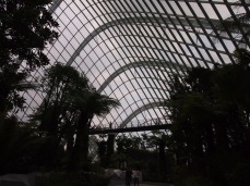 Singapour - Gardens By The Bay : Cloud Forest